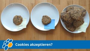 cookies-akzeptieren
